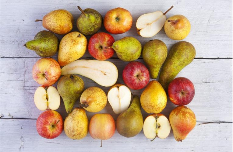 South African fruit group Hortgro says exports to UK will continue as planned