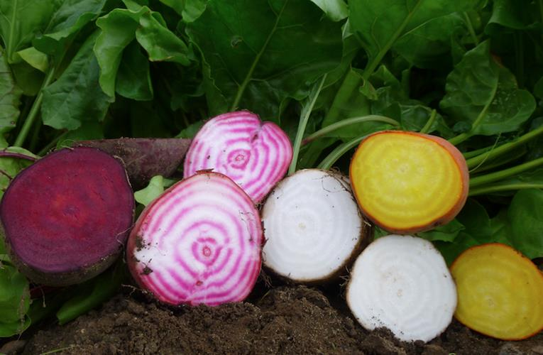 Market trendsetters beating the drum for beetroot