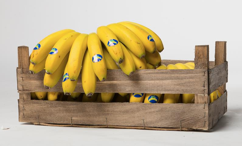 Trade groups, NGOs note disturbing banana price trends in UK supermarkets