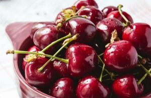 South Africa: ZZ2 gears up for second cherry export deal