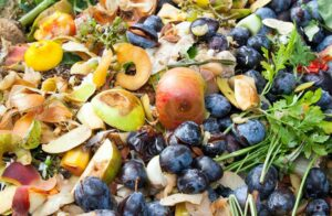 Why competition can help in the battle to reduce food waste