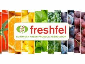 Freshfel: EU and UK negotiators cannot let the fresh produce sector down