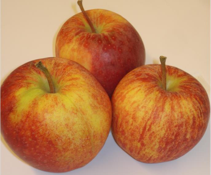 Could the marketing period for popular UK-grown Gala apples be extended?