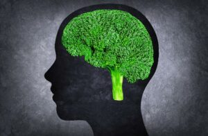 Can we really train our brains to eat healthily?