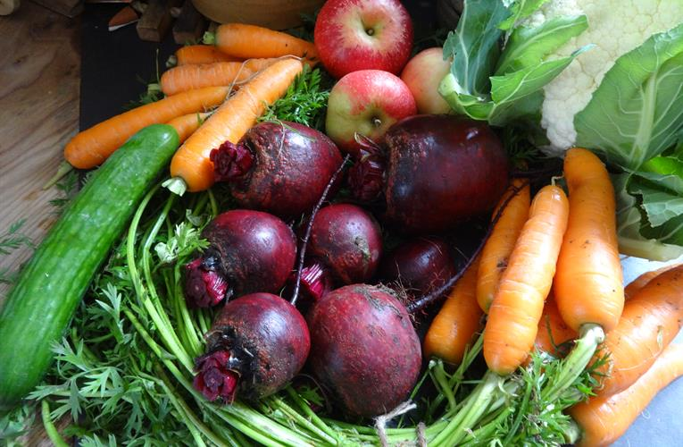 EU recognizes UK organic certification for one year, alleviating stress of 2020