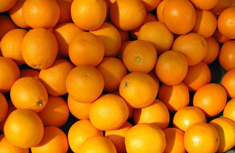 South Africa: Citrus industry hopeful for resolution to port crisis as operator takes action