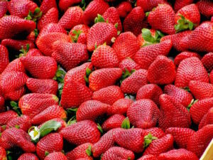 Tesco snaps up bountiful strawberry crop for bank holiday sales