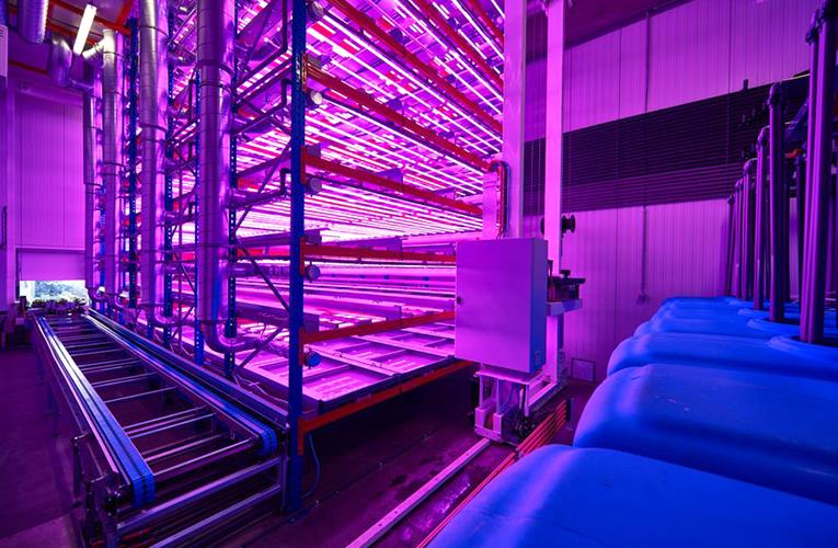 Urban Crop Solutions offers a glowing and growing global future for indoor farming